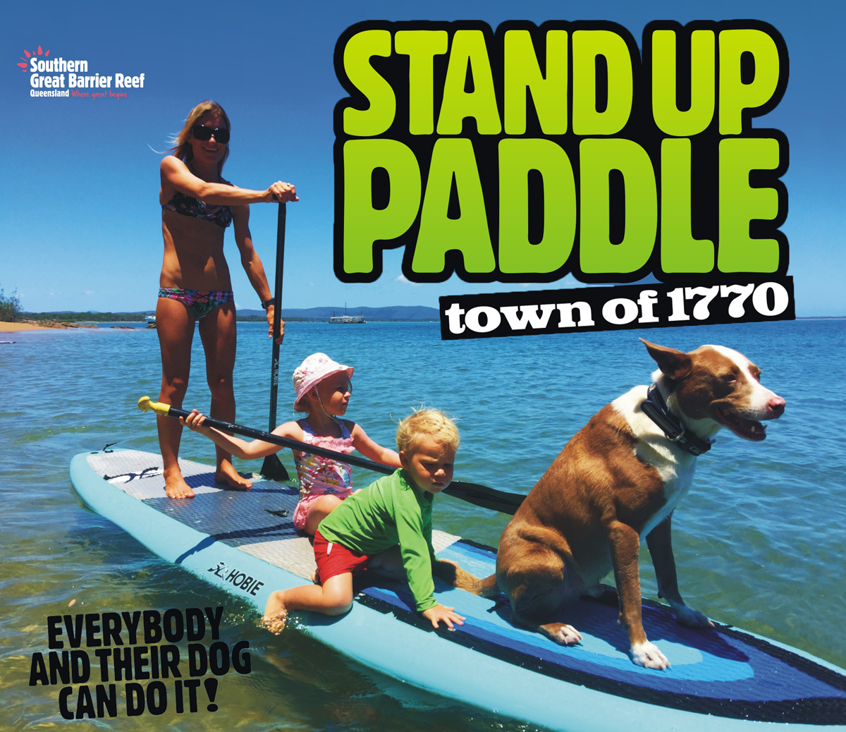 Town of 1770 Stand Up Paddle Hire - Everybody and their Dog can do it!