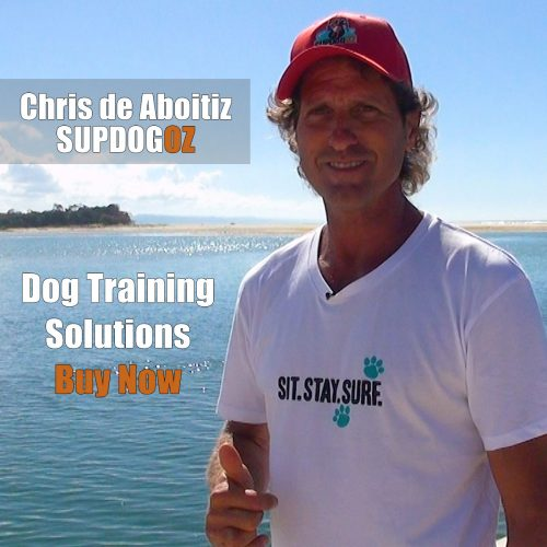 SupDogOz dog training solutions series to buy
