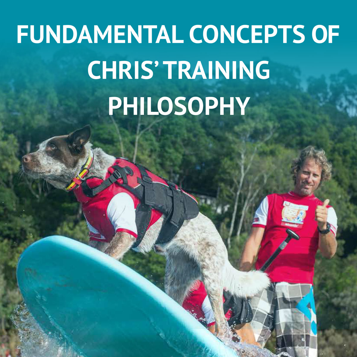 Download Chris' Training Fundamentals